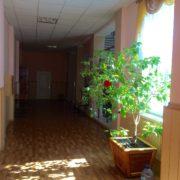 donetsk_national_medical_university_dnmu_kirovohrad_16_20170227_1572396371